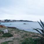 Viviendas-Cala-Ratjada---Mallorca3